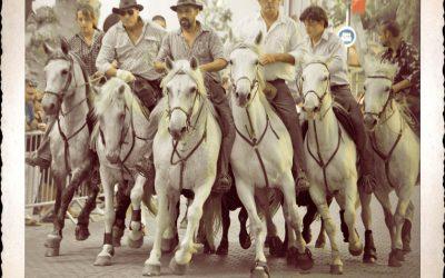 Dimanche 1er Julliet 2012 – Chasing Bulls