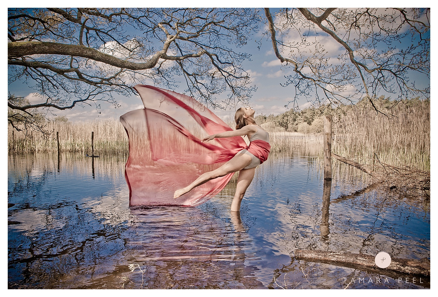 Tamara Peel. Fine Art. Water Fairy. Girl. Wings. Lake. Beautiful_0052